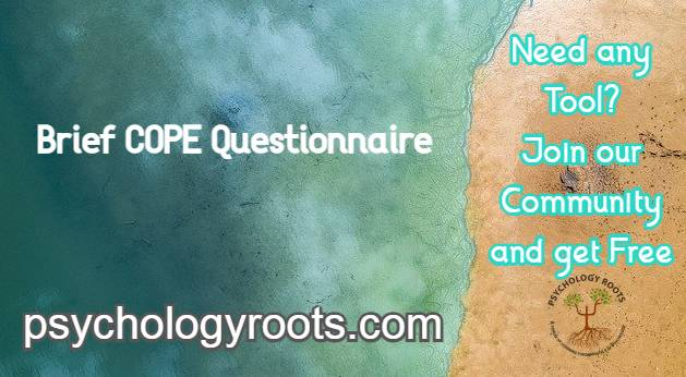 Brief COPE Questionnaire