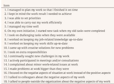Individual Workplace Performance Questionnaire