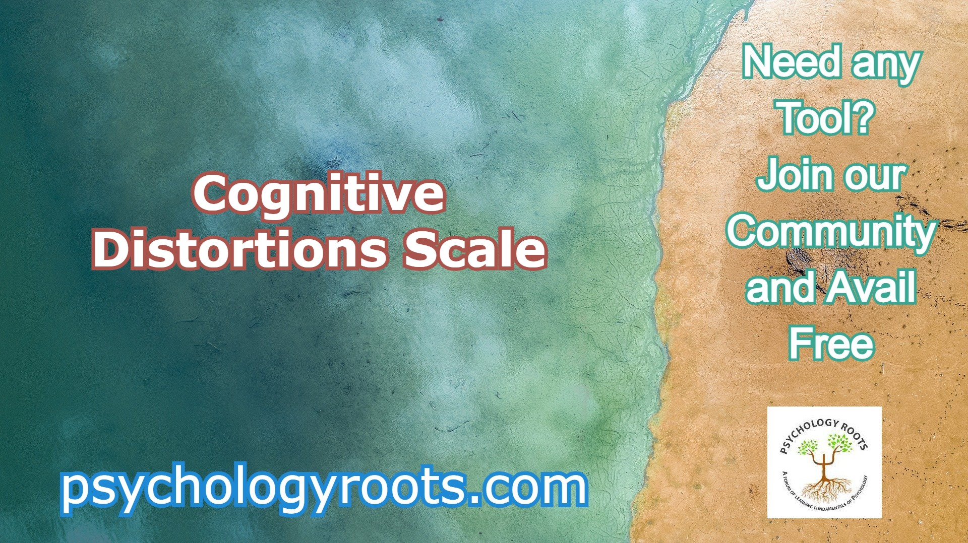 Cognitive Distortions Scale