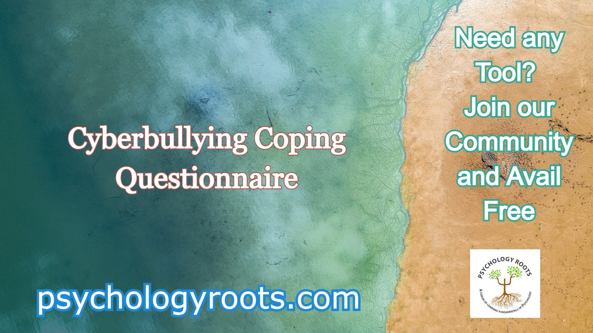 Cyberbullying Coping Questionnaire