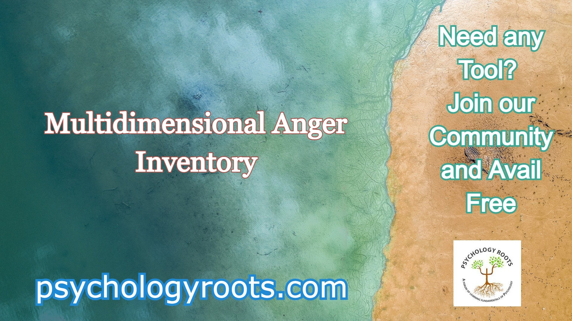 Multidimensional Anger Inventory