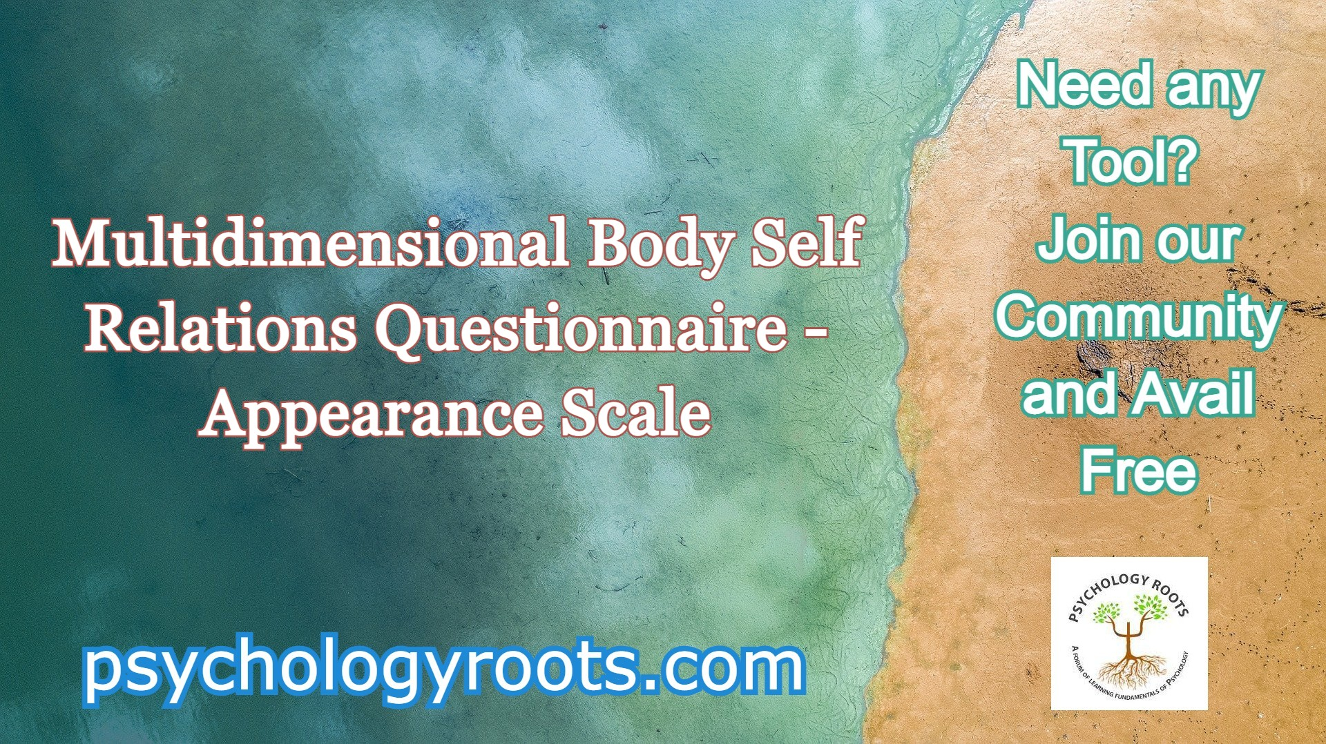 Multidimensional Body Self Relations Questionnaire - Appearance Scale