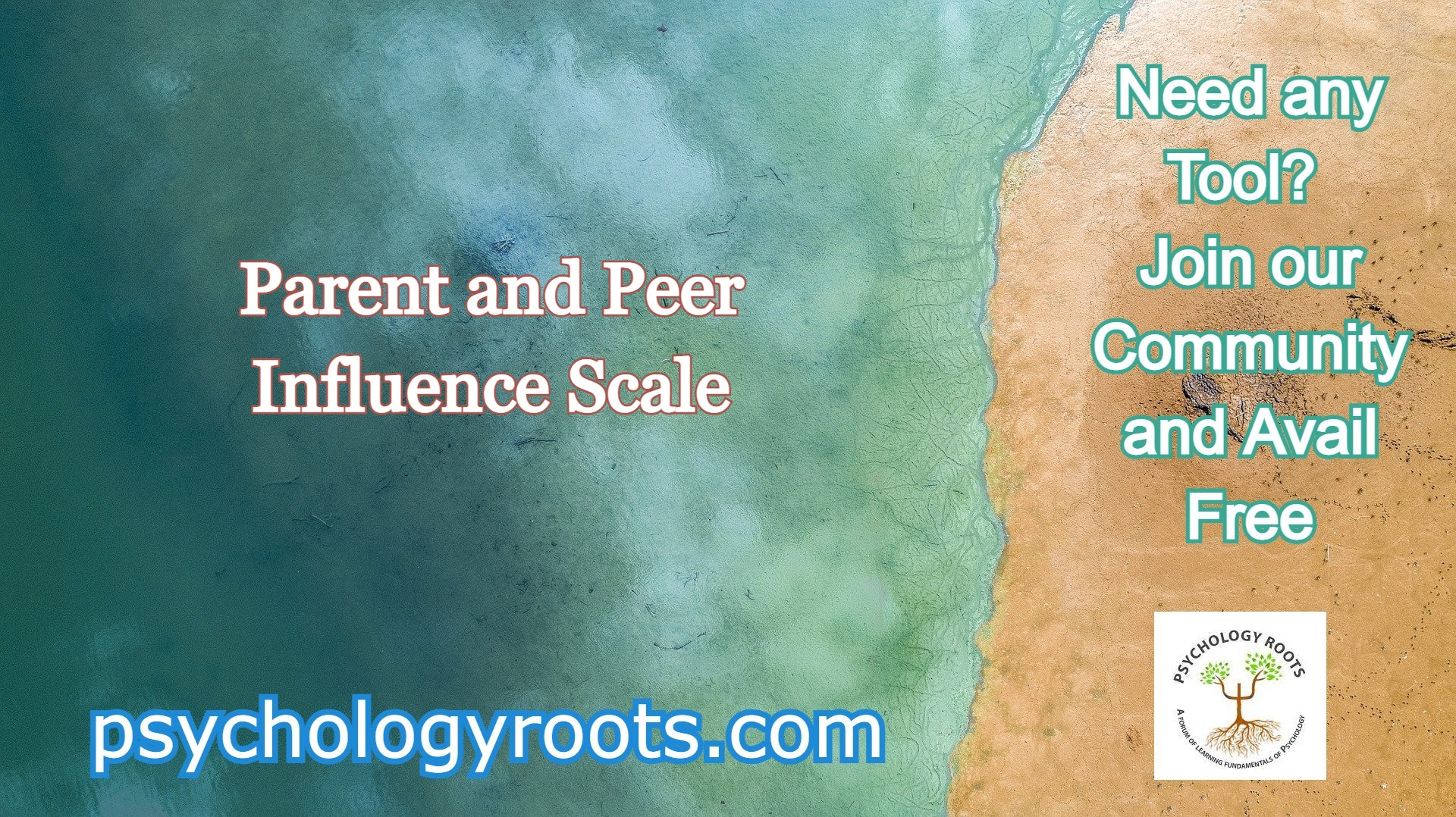 Parent and Peer Influence Scale