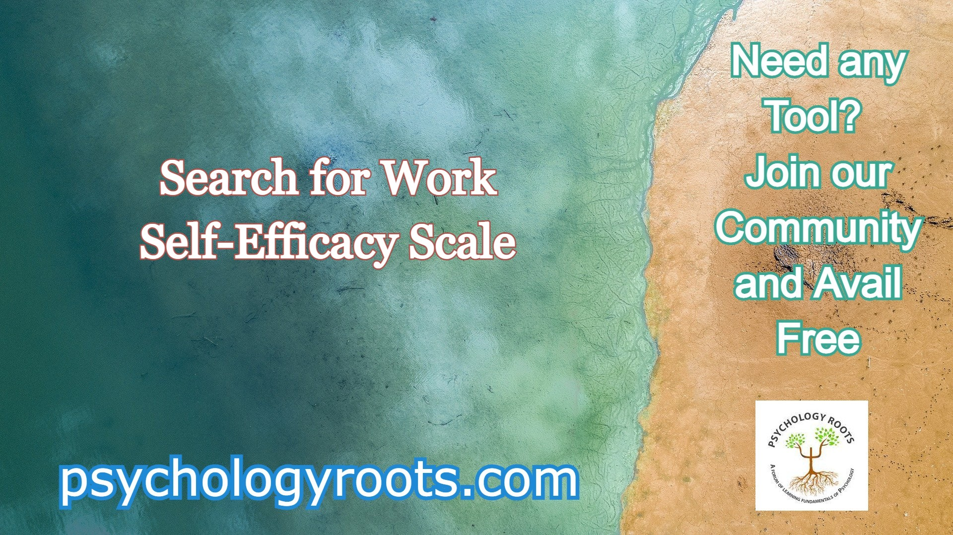 Search for Work Self-Efficacy Scale
