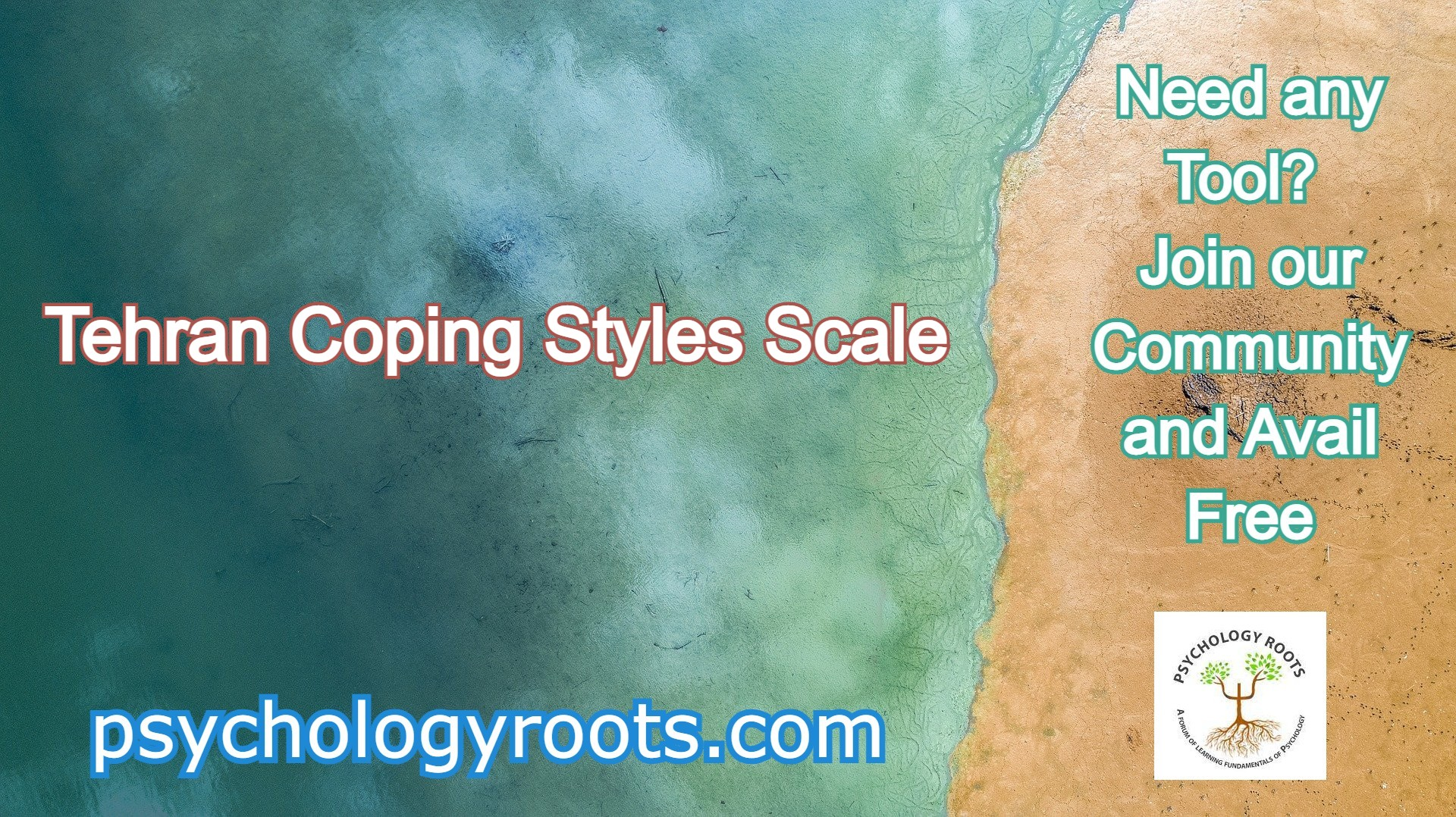 Tehran Coping Styles Scale