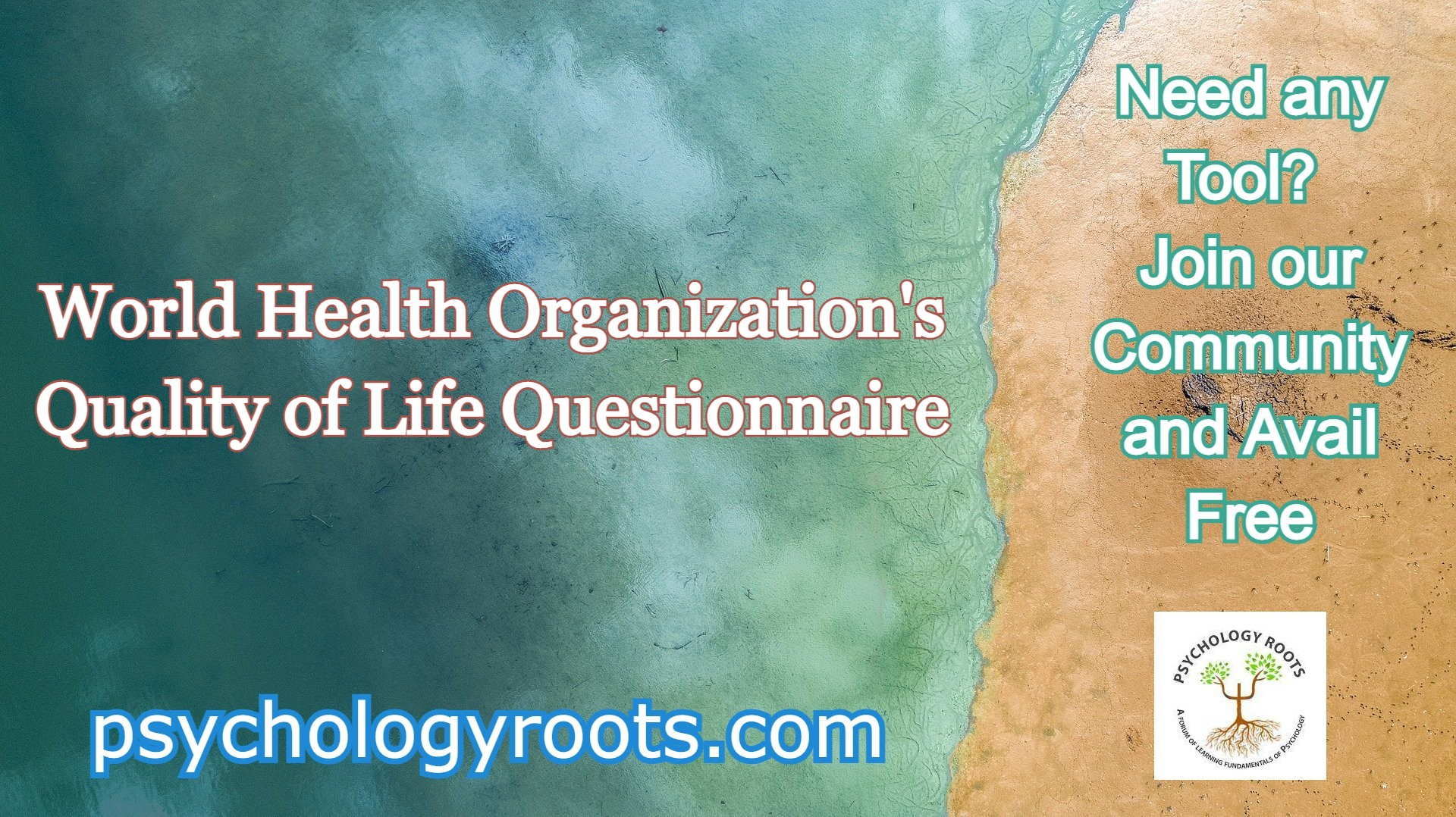 World Health Organization's Quality of Life Questionnaire