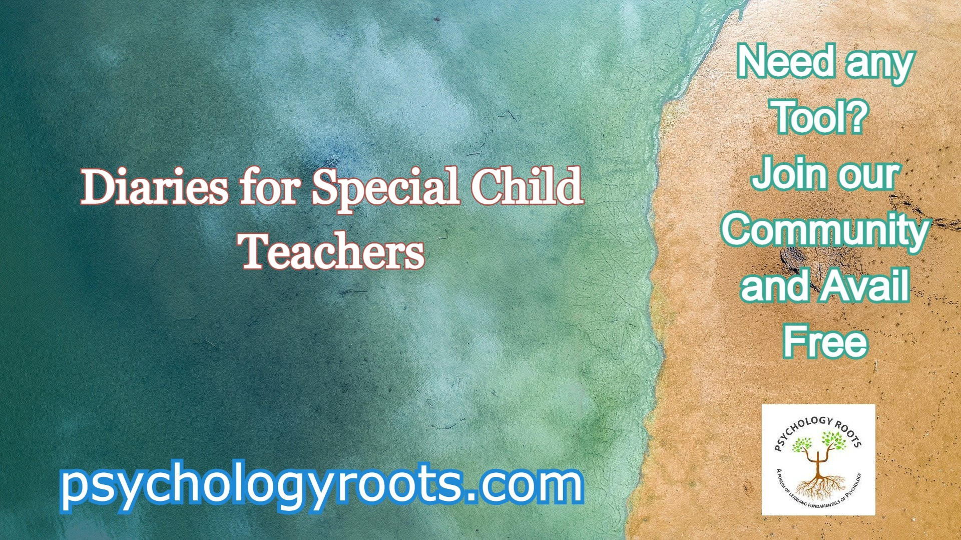 Diaries for Special Child Teachers
