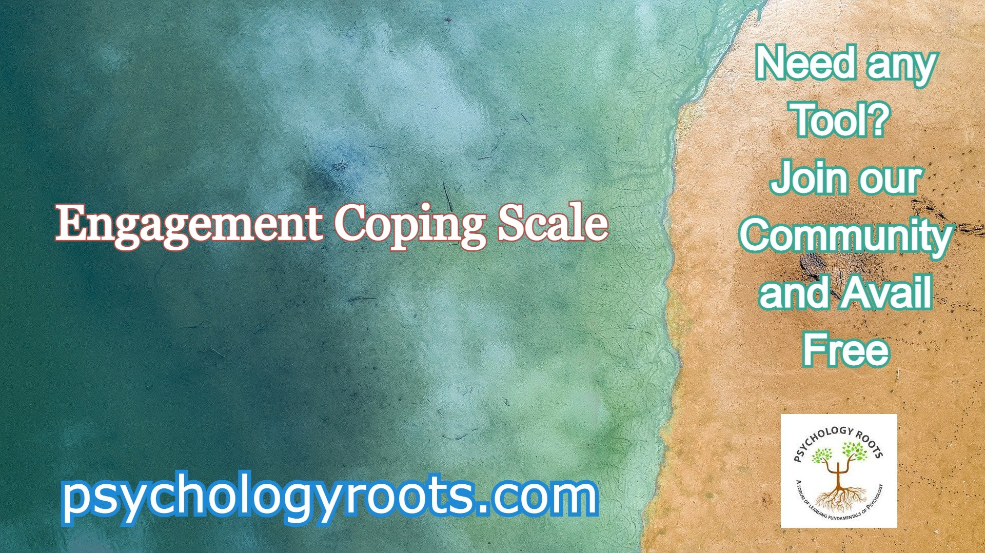 Engagement Coping Scale