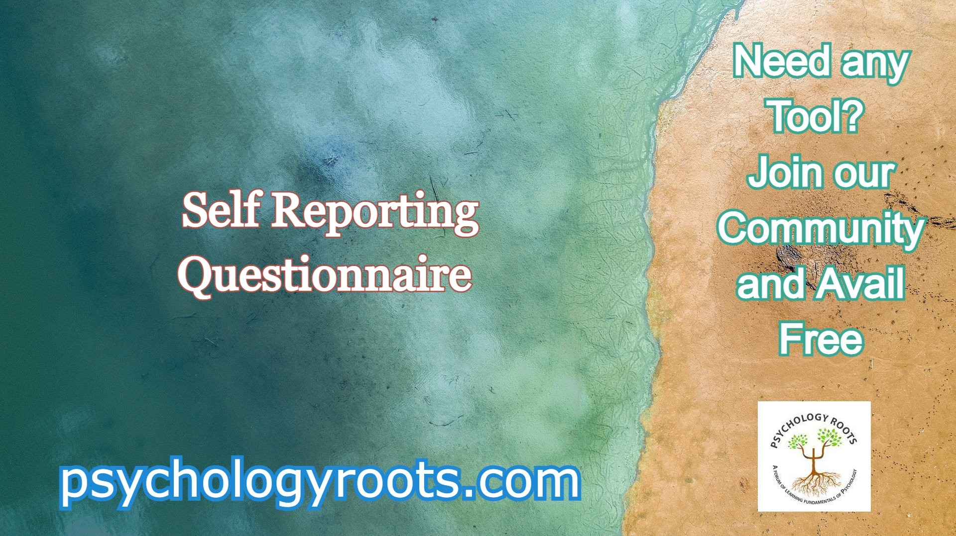 Self Reporting Questionnaire