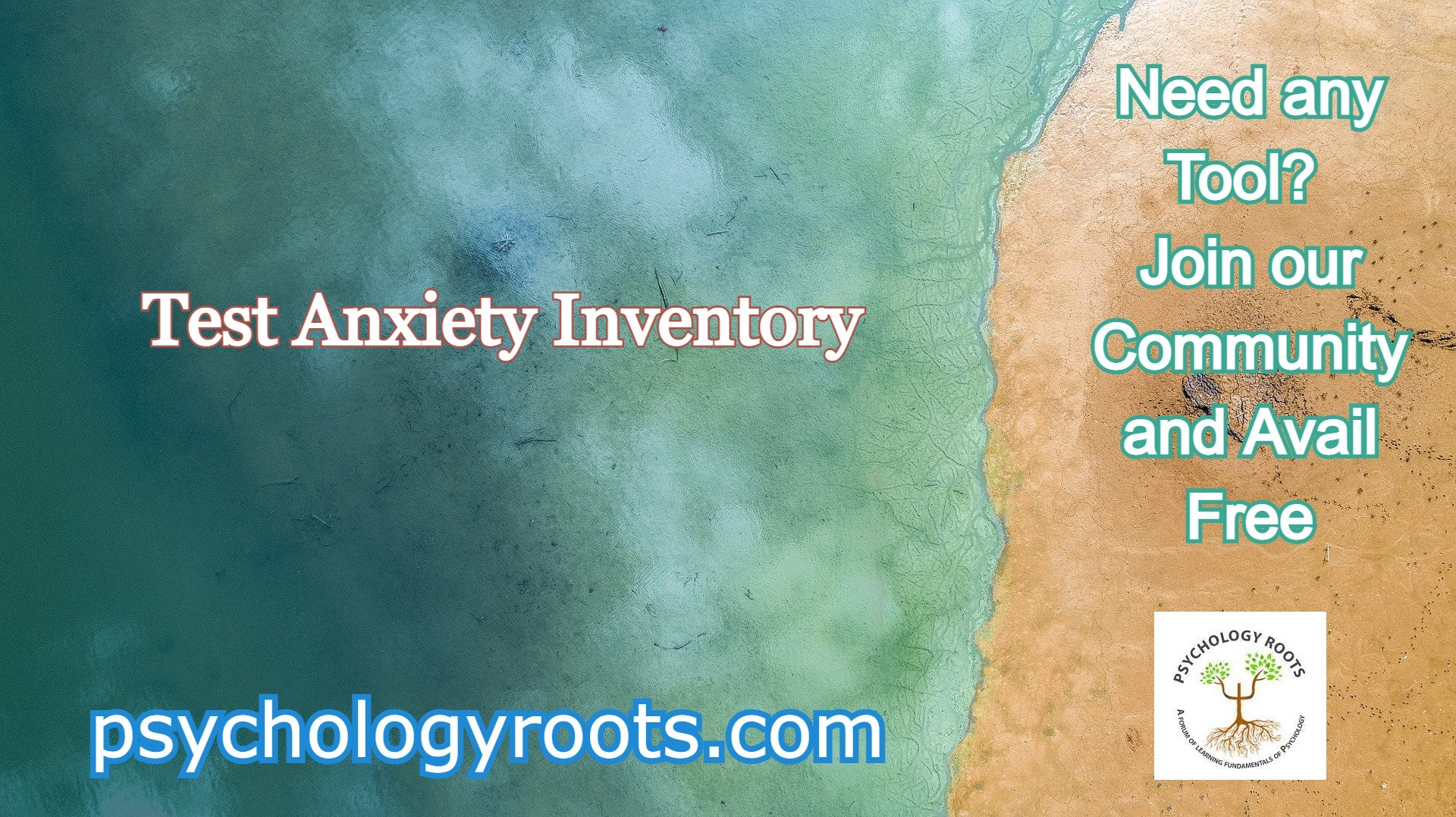 Test Anxiety Inventory