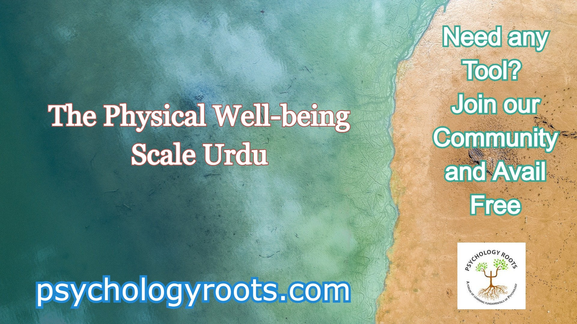 The Physical Well-being Scale Urdu